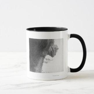 La roche principale de la grenouille sur la mug
