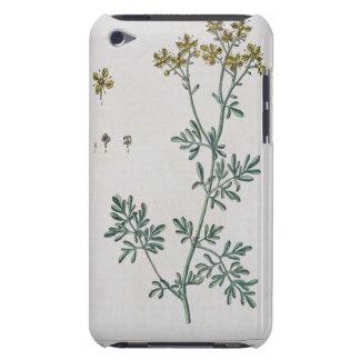 """La rue, plaquent 7 """"d'un de fines herbes curieux"""", étuis barely there iPod"""
