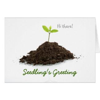 La salutation de la jeune plante carte de vœux