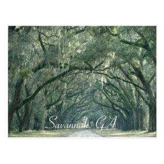La savane, carte postale de GA