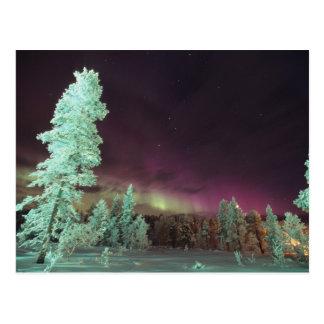 La Scandinavie, Finlande, Laponie, Kakslauttanen, Carte Postale