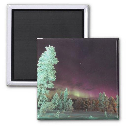 La Scandinavie, Finlande, Laponie, Kakslauttanen, Magnets