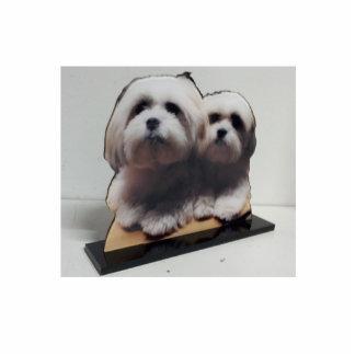 La sculpture acrylique en photo se lèvent photo sculpture