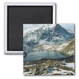 La Suisse, Grindelwald, Alpes de Bernese, vue Magnet Carré