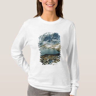 La Suisse, Grindelwald, Alpes de Bernese, vue T-shirt