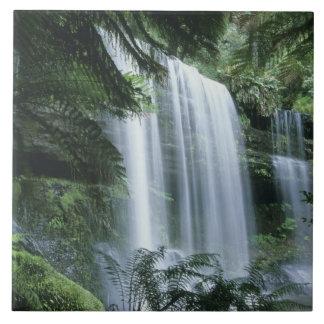 La Tasmanie, parc national de champ de Mt., automn Grand Carreau Carré