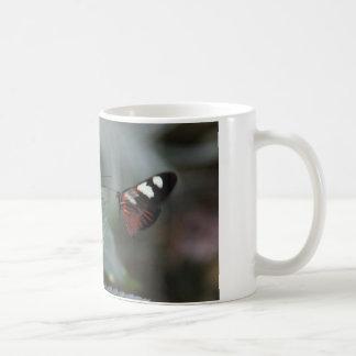 la tasse de café avec 2 papillons… viennent