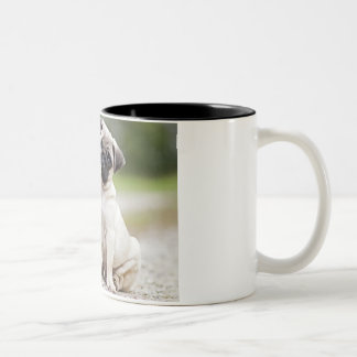 la tasse de carlin, une tasse de café avec un