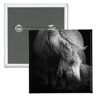 La tête et la crinière de poney de beaux-arts se badges
