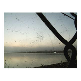 La toile de l'araignée | carte postale