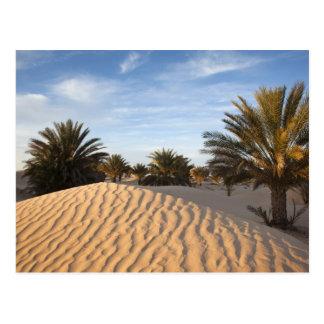 La Tunisie, désert du Sahara, Douz, grande dune, Carte Postale