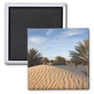 La Tunisie, désert du Sahara, Douz, grande dune, p Magnet Carré