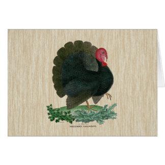 La Turquie vintage Cartes De Vœux
