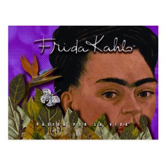 La Vida de Frida Kahlo Pasion Por Cartes Postales