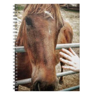 La vie de cheval carnet à spirale