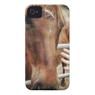 La vie de cheval coque iPhone 4 Case-Mate