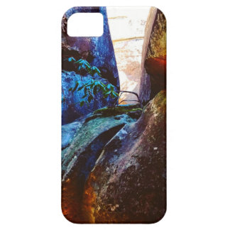 La vie de roche coques Case-Mate iPhone 5