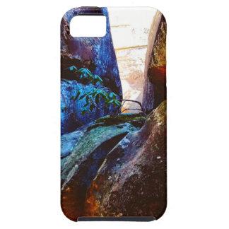 La vie de roche étuis iPhone 5