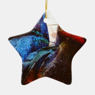 La vie de roche ornement étoile en céramique