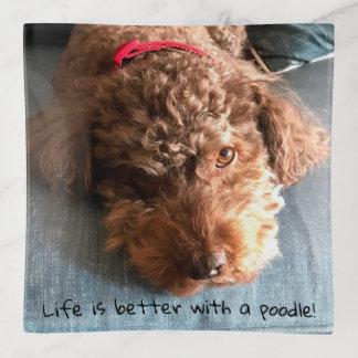 La vie est meilleure avec un caniche ! Plateau de