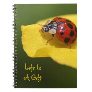 La vie est un carnet de coccinelle de cadeau