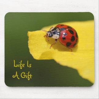La vie est un tapis de souris de coccinelle de