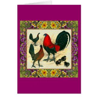 La volaille de jeu a fleuri le cadre cartes de vœux