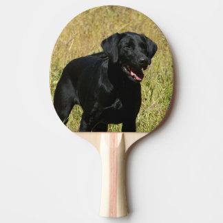 Laboratoire noir raquette de ping pong