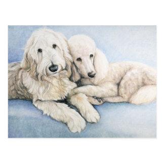 Labradoodle et carte postale d'art de chien de