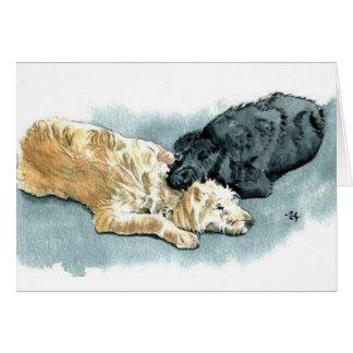 Labradoodles dans la carte de voeux d'amour