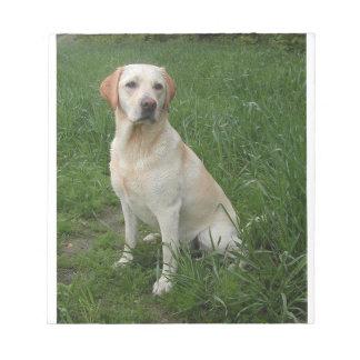 Labrador jaune complètement bloc-note