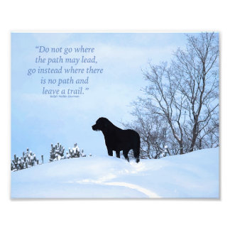 Labrador noir - citation 2 de la vie de chemin impression photo