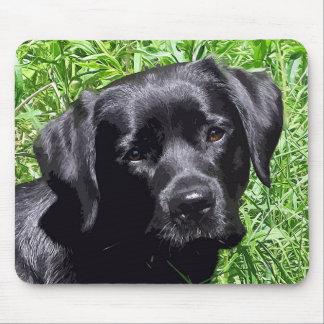 Labrador noir - journée de printemps tapis de souris