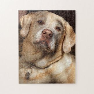 Labrador retriever 2 puzzle
