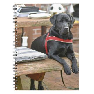 Labrador retriever noir personnalisable carnet
