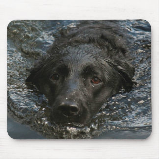 Labrador retriever noir personnalisable tapis de souris
