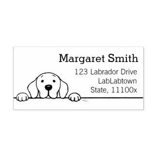 Labrador vous observant adresser le timbre