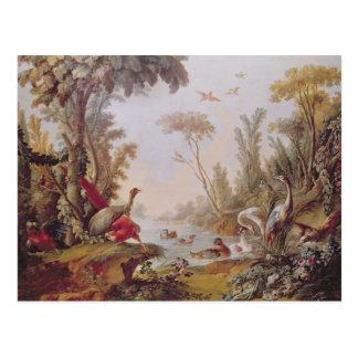 Lac avec des oies, des cigognes, des perroquets et cartes postales