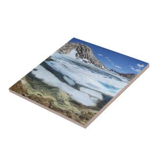 Lac congelé bear blanc - sierra petit carreau carré