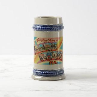 Lac en valeur le vieux souvenir vintage de voyage chope à bière