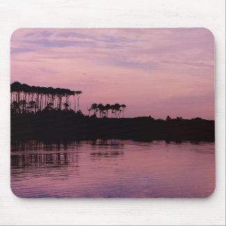 Lac occidental dans le tapis de souris rose