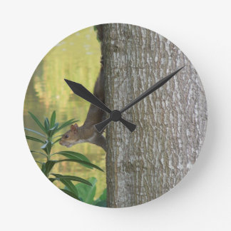 LAC SQUIRREL.JPG HORLOGE RONDE