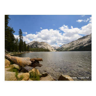 Lac Tenaya, Yosemite NP Carte Postale