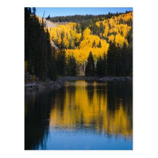 Lacs mesa en automne carte postale