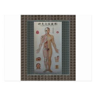 L'acuponcture dirige le plein art de paroi cartes postales