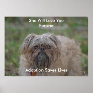L'adoption sauve des Vie-chiens Poster