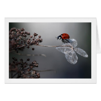 Ladybird sur le vieil hortensia carte de vœux