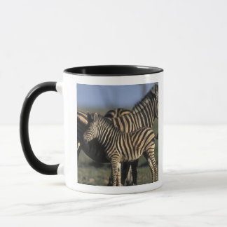 L'Afrique, Botswana, parc national de Chobe, Mug