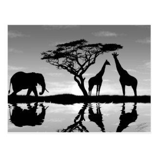 L'Afrique Carte Postale