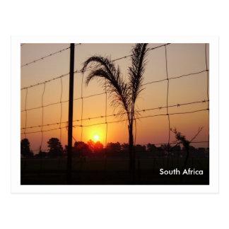 L'Afrique du Sud Carte Postale
